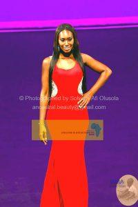 2015 Miss Ghana USA -214
