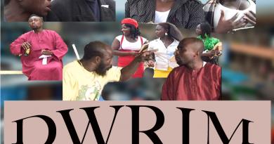 DWRIM 1