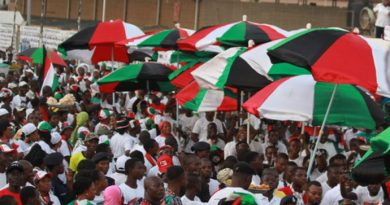 NDC Supporters : Foto Source: NDC Website