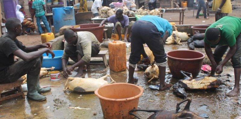 State Of Suame Abattoir Foto Credit Isaac Justice Bediako