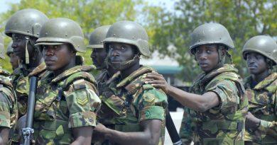 western_accord_13_ghanaian_soldiers_2013-06-26_b002