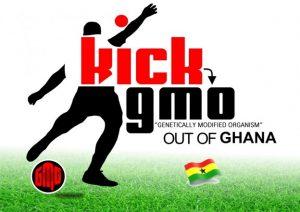Photo Courtesy: panafrianistinternational.org